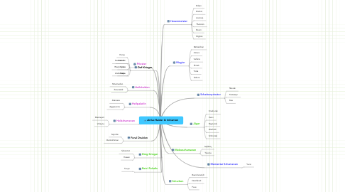 Mind Map: aktive Raider & Initianten