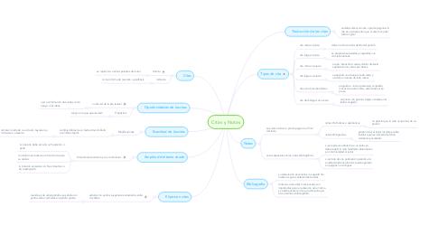 Mind Map: Citas y Notas