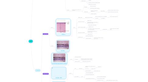 Mind Map: MIAS Y RIAS