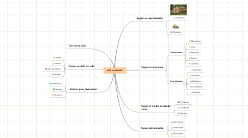 Mind Map: LOS  ANIMALES