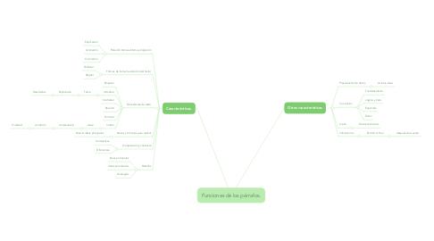 Mind Map: Funciones de los párrafos.