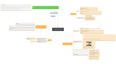 Mind Map: Should America Be the World's Policeman ?