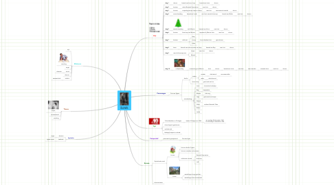 Mind Map: De avonden Gerard Reve