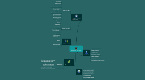 Mind Map: MAPA MENTAL TOTAL WIKIS