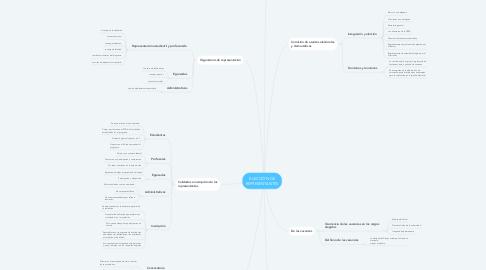 Mind Map: ELECCIÓN DE REPRESENTANTES