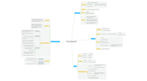 Mind Map: PROJET DE COMMUNICATION SOLANN DREAM TEAM