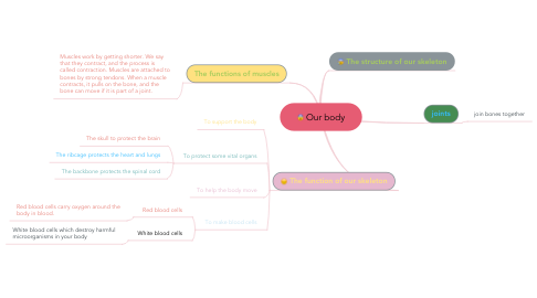Mind Map: Our body
