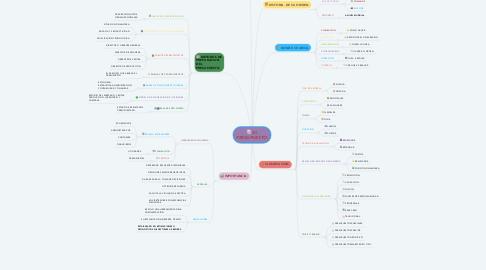 Mind Map: EL PRESUPUESTO.