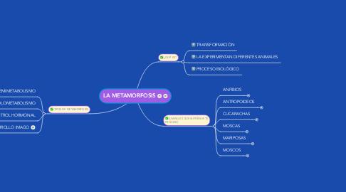 Mind Map: LA METAMORFOSIS