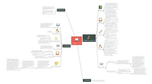 Mind Map: TEMAS 12 Y 13