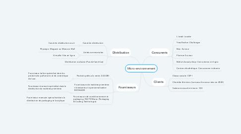 Mind Map: Micro-environnement