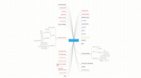 Mind Map: Formats Discordance