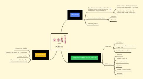 Mind Map: Meiosis