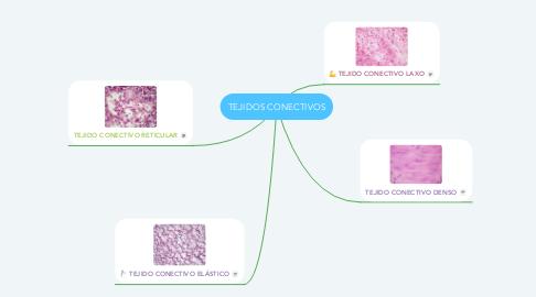 Mind Map: TEJIDOS CONECTIVOS