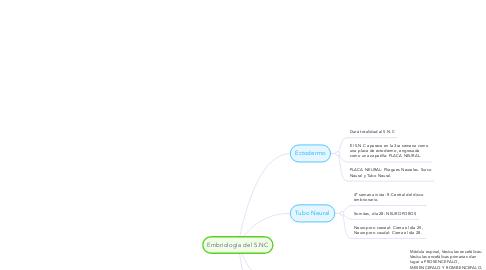 Mind Map: Embriología del S.NC