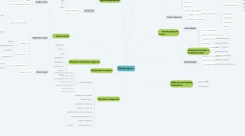 Mind Map: Живой журнал