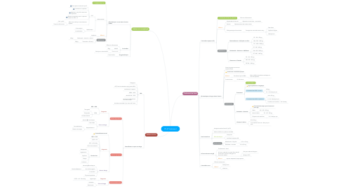 Mind Map: P5.8 Traitement