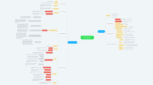 Mind Map: Konsumentmarked - Af Michael Og Peter