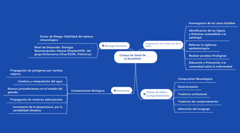 Mind Map: Campo de Salud de la Encefalitis