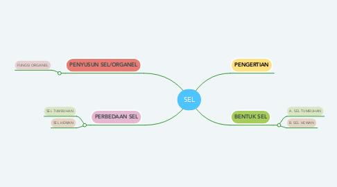 Mind Map: SEL