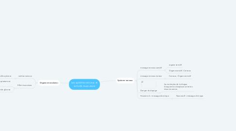 Mind Map: Les système nerveux et activité musculaire