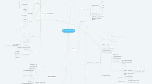 Mind Map: Бизнес кабинет ГФ