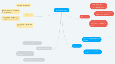 Mind Map: Micro-organismes