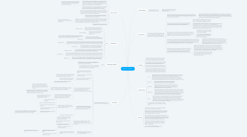 Mind Map: Nihal uit windland