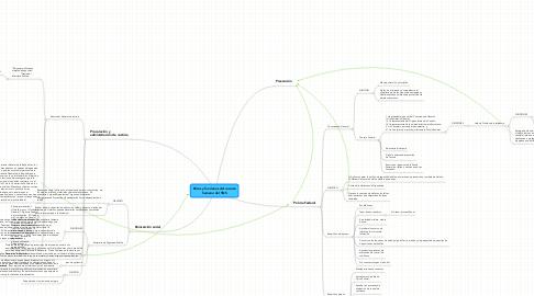 Mind Map: Roles y funciones del recurso humano del SNS