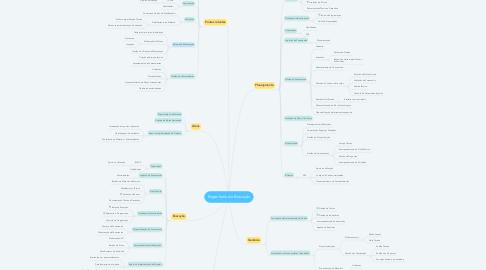 Mind Map: Engenharia de Execução