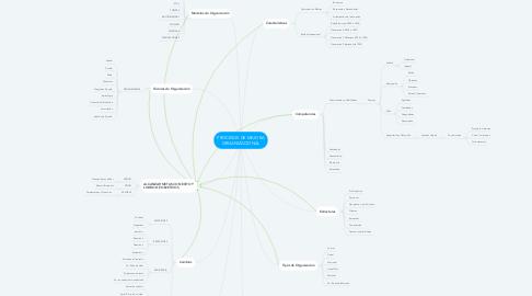 Mind Map: PROCESOS DE MEJORA ORGANIZACIONAL