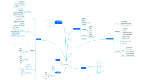 Mind Map: Project Plan