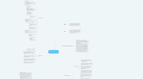 Mind Map: Empresa de Taxis
