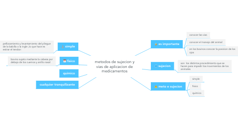 Mind Map: metodos de sujecion y vias de aplicacion de medicamentos