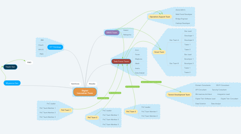 Mind Map: Digital Innovation Team