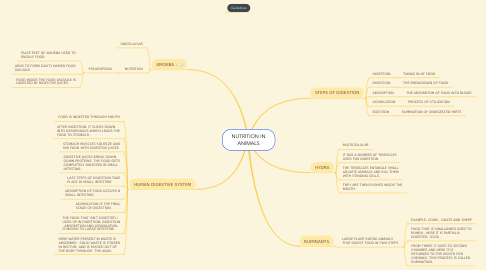 Mind Map: NUTRITION IN ANIMALS