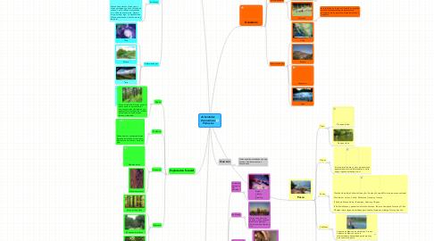 Mind Map: ActividadesEconomicasPrimarias
