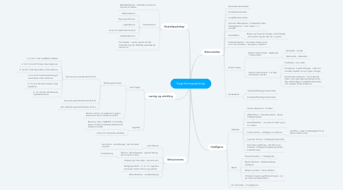 Mind Map: Kognitionspsykologi
