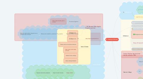 Mind Map: İlk Yenileşme Dönemi