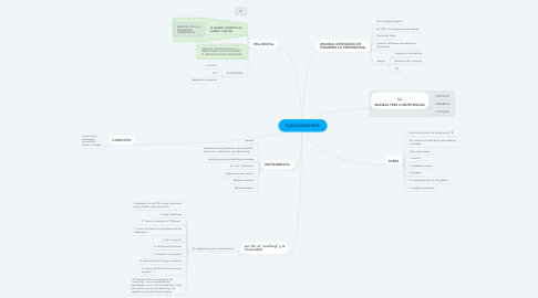 Mind Map: PLAN COACHING