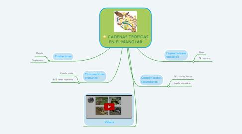 Mind Map: CADENAS TRÒFICAS EN EL MANGLAR