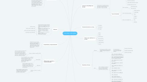 Mind Map: PROCESSO DECISÓRIO