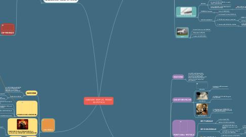 Mind Map: GARANZIE SEMPLICI, PEGNO ED IPOTECA