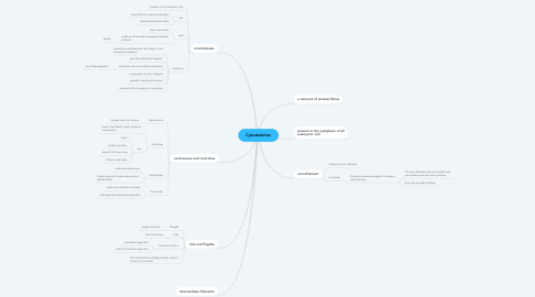 Mind Map: Cytoskeleton