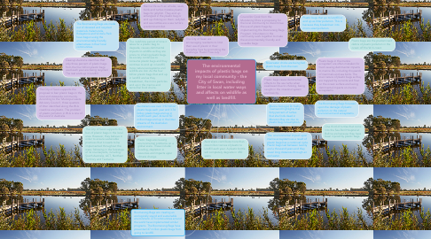 Mind Map: The environmental impacts of plastic bags on my local community - the City of Swan, including litter in local water ways and affects on wildlife as well as landfill.
