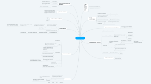 Mind Map: FUNDACIONES