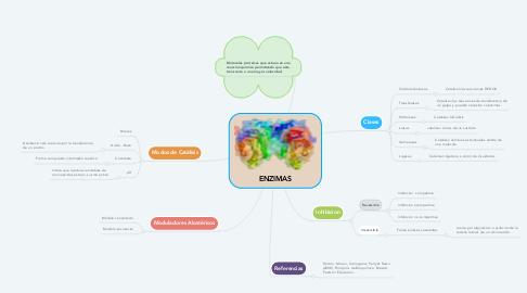 Mind Map: ENZIMAS