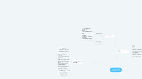 Mind Map: TEORIA DE LA ADMINISTRACION