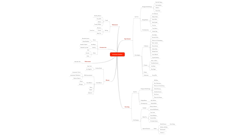 Mind Map: American Fashion