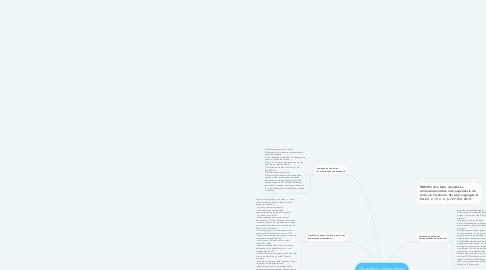 Mind Map: Questões e controvérsias sobre uma experiência de curso via Facebook